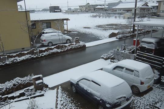 0408雪になっちゃった。.JPG