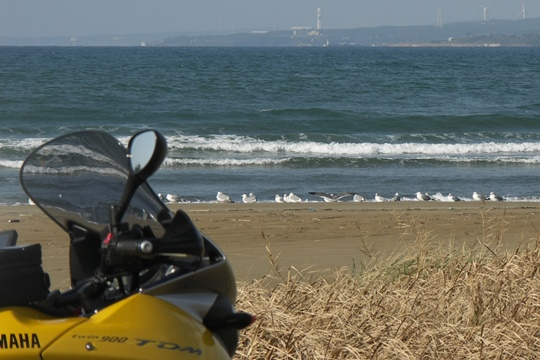 1105海辺にて。.JPG