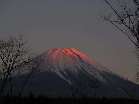 1230朝霧にて.JPG