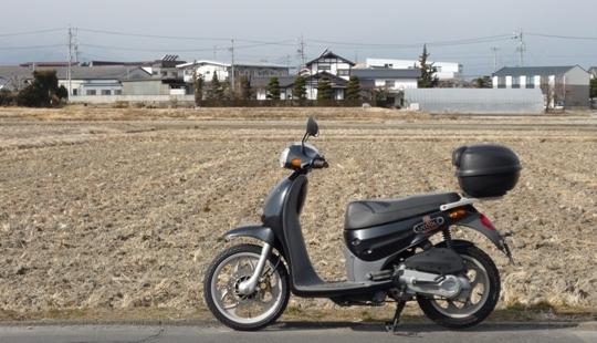 2011-01-26.jpg