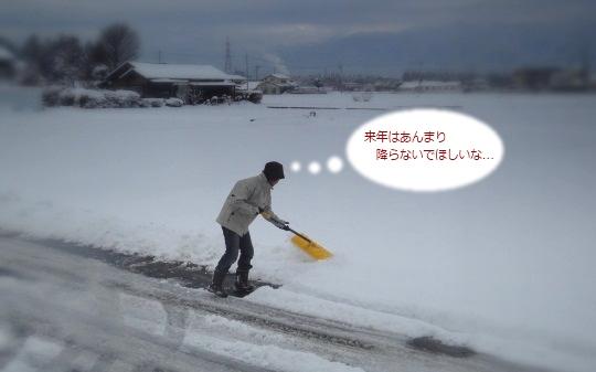2011雪かき.jpg
