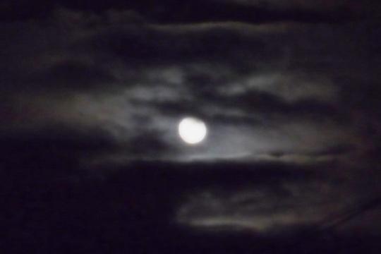 お月様。.jpg