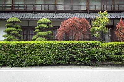 日本的豪華さ。.jpg