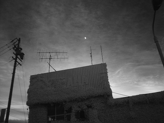 月と夕日IR.jpg
