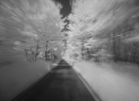 Stream in the woods-2.jpg
