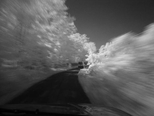 Stream in the woods-3.jpg