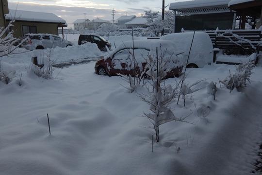 0109の雪。.JPG