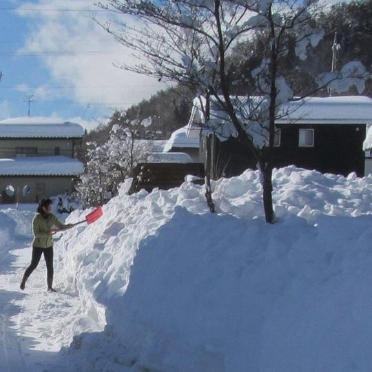 0217雪かきプロ3.JPG