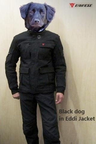 1031Eddi Jacket..JPG