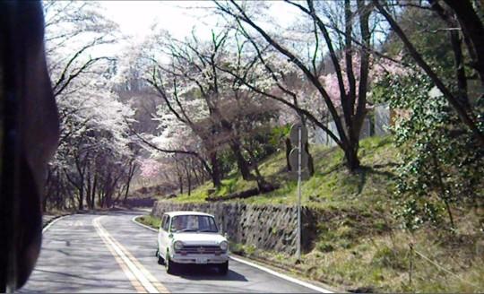 桜とN360。.jpg